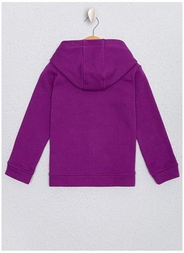 U.S. Polo Assn. Sweatshirt Mor